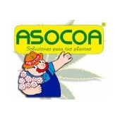 ASOCOA
