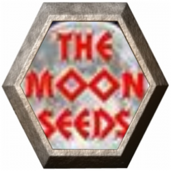 Moon Collection 2 6 semillas The Moon Seeds THE MOON SEEDS THE MOON SEEDS