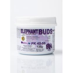 Elephant Bud PK 42-56 120gr RADICAL NUTRIENTS RADICAL NUTRIENTS