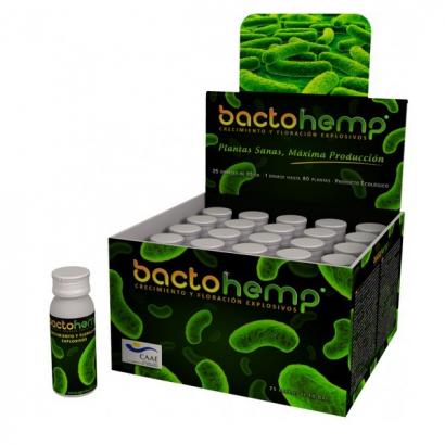 Bactohemp 10gr Agrobacterias AGROBACTERIAS FUNGICIDAS BIO