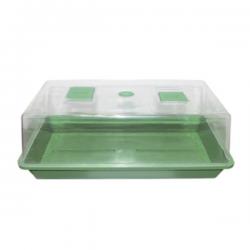 Propagador fondo verde (56x31x22cm)   PROPAGADORES