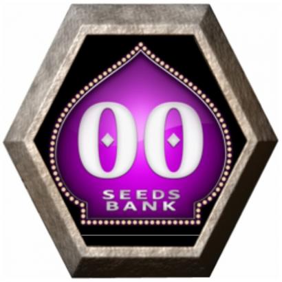 Automatik Mix 5 semillas 00 Seeds Bank 00 SEEDS BANK 00 SEEDS BANK