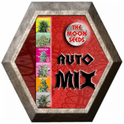 Auto Mix 10 semillas The Moon Seeds THE MOON SEEDS THE MOON SEEDS