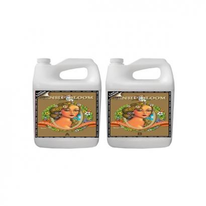 Sensi Bloom Coco A&B PH Perfect 500ml Advanced Nutrients ADVANCED NUTRIENTS ADVANCED NUTRIENTS