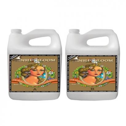 Sensi Bloom Coco A&B PH Perfect 5lt Advanced Nutrients ADVANCED NUTRIENTS ADVANCED NUTRIENTS