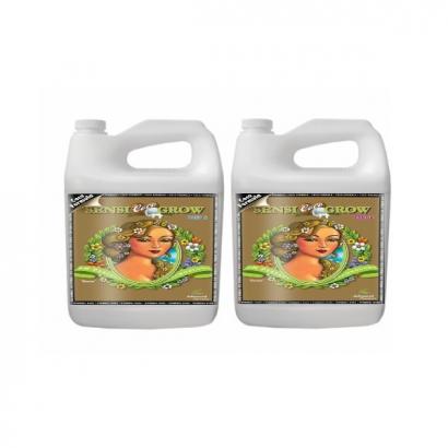 Sensi Grow Coco A&B PH Perfect 500ml Advanced Nutrients ADVANCED NUTRIENTS ADVANCED NUTRIENTS