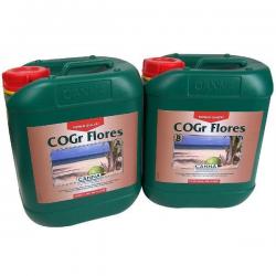 COGR Flores A + B 5 LT Canna