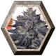 Gordo Master Kush 6 semillas Positronics Seeds POSITRONIC SEEDS POSITRONICS SEEDS