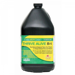 Thrive Alive B-1 Green 4l Technaflora