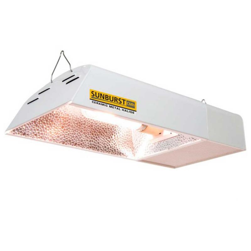 Sunburst 315W + lámpara 4200K Otros LEC