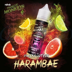 E-liquid Harambae 0mg (Booster) 50ml Twelve Monkeys