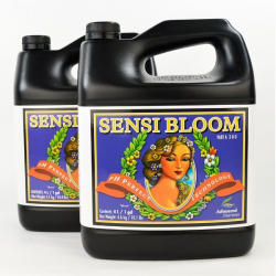 Sensi Bloom A&B 4LT Advanced Nutrients ADVANCED NUTRIENTS ADVANCED NUTRIENTS