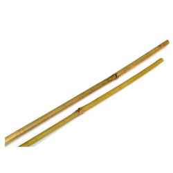 Tutor bambu 1m 8/10 (500 u)  TUTORES