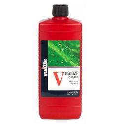 Vitalize 1l Mills MILLS MILLS