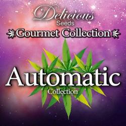 Gourmet Collection Auto 1 9 semillas Delicious Seeds DELICIOUS SEEDS DELICIOUS SEEDS