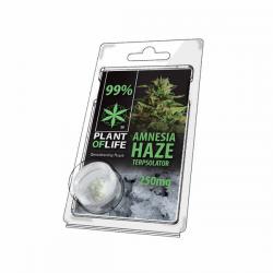 Terpsolator 99% CBD Amnesia Haze 250mg Plant Of Life  Cristales de CBD