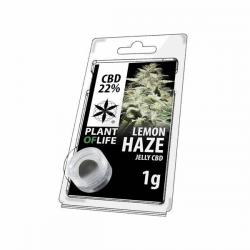 Jelly 22% de CBD Lemon Haze 1gr Plant of Life  Incienso CBD