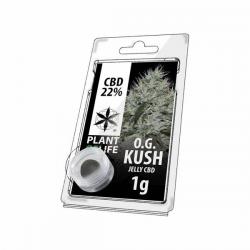 Jelly 22% de CBD OG Kush 1gr Plant of Life  Incienso CBD