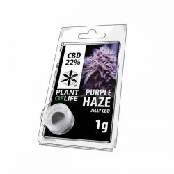 Jelly 22% de CBD Purple Haze 1gr Plant of Life  Incienso CBD