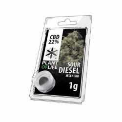 Jelly 22% de CBD Sour Diesel 1gr Plant of Life  Incienso CBD